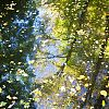 herfst, herfskleuren, weerspiegeling