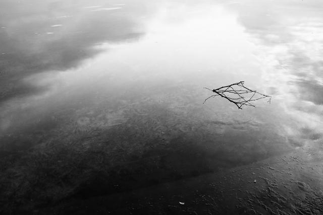 zw fotografie, ijs, weerspiegeling