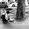 Straatfotografie, Parijs, Boulevard Saint Germaine, Street Photography